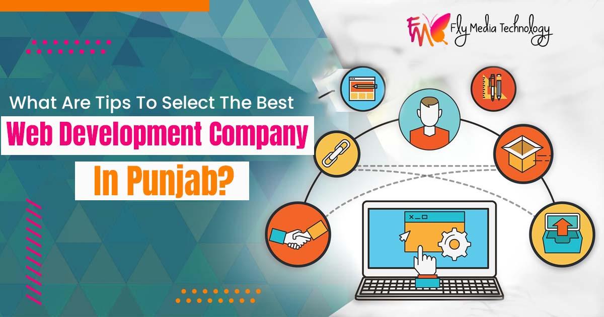 web development company in Punjab