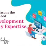 5 topmost reasons the businesses need web development company expertise
