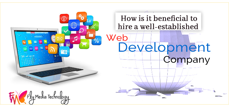 How-is-it-beneficial-to-hire-a-well-established-web-development-company
