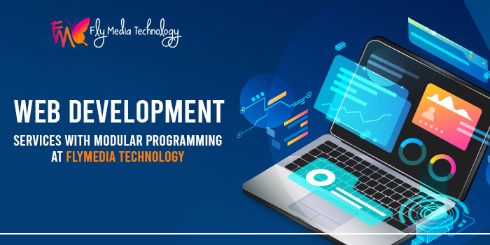 Web development services with modular programming at Flymedia technology