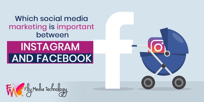 Which social media marketing is important between Instagram and Facebook