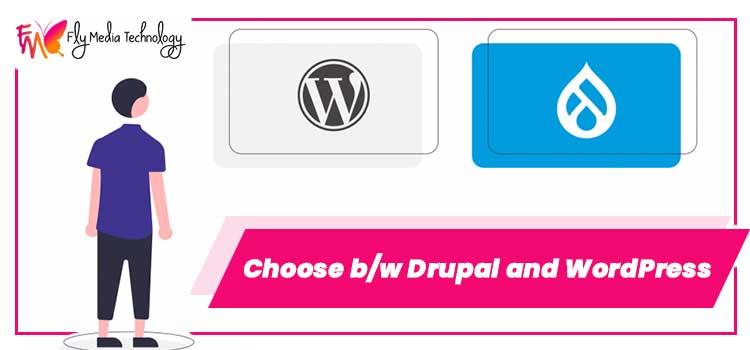 Choose-bw-Drupal-and-WordPress-FLY-MEDIA-PSD