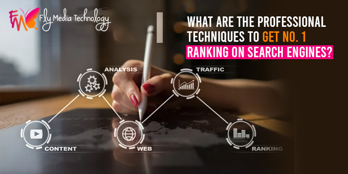 What are the professional techniques to get the No. 1 ranking on search engines?
