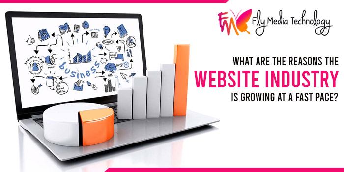What are the reasons the website industry is growing at a fast pace
