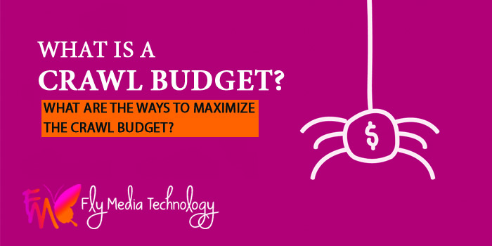 What is a crawl budget What are the ways to maximize the crawl budget
